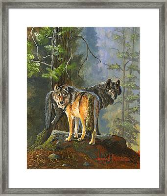 Gray Wolves Framed Print by Jeff Brimley