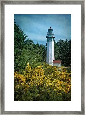 Grays Harbor Lighthouse Framed Print by Joan Carroll