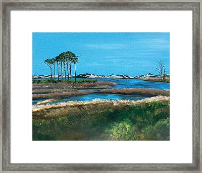 Grayton Beach State Park Framed Print by Racquel Morgan