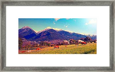 Framed Print featuring the photograph Grazing Cows 2 by Giuseppe Epifani
