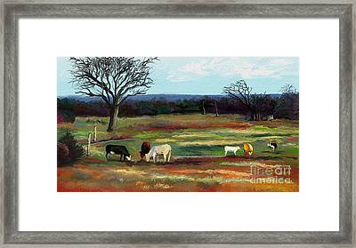 Grazing In The Pasture Framed Print