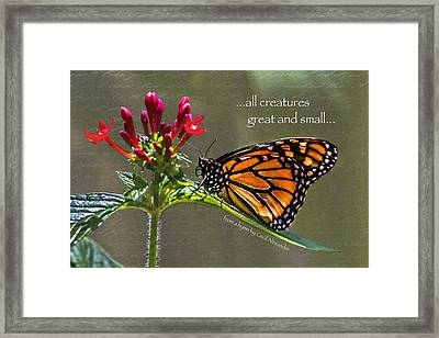 Great And Small Framed Print by Karen Stephenson