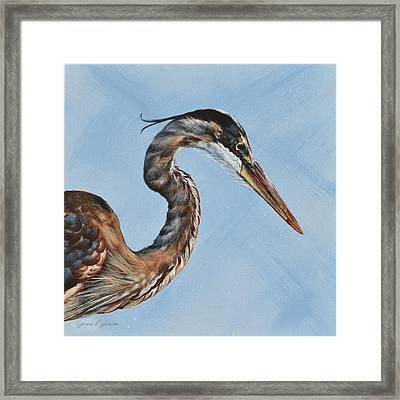 Great Blue Iv Framed Print