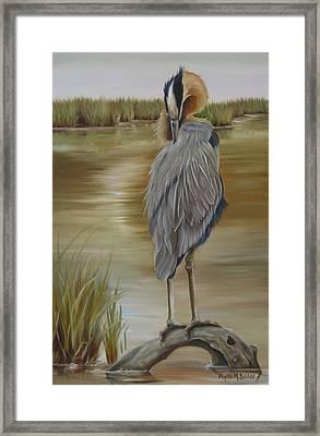 Great Blue Heron At Half Moon Island Framed Print
