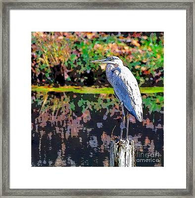 Great Blue Heron At The Pond Framed Print