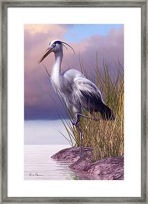 Great Blue Heron Framed Print by Gary Hanna