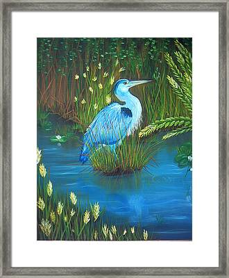 Great Blue Heron Framed Print by Kathern Welsh