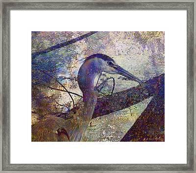 Great Blue Heron Looking Things Over Framed Print