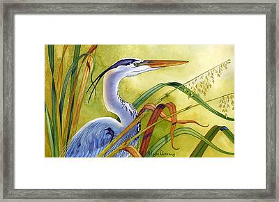 Great Blue Heron Framed Print by Lyse Anthony