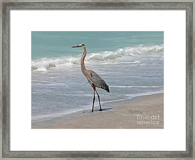 Great Blue Heron On Beach Framed Print by Mariarosa Rockefeller