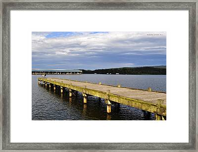 Great Blue Heron Sunning On The Dock Framed Print