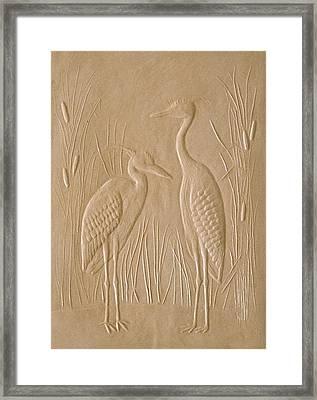 Great Blue Herons Framed Print by Deborah Dendler