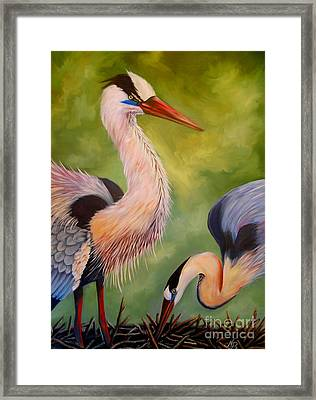 Great Blue Herons Framed Print by Nancy Bradley