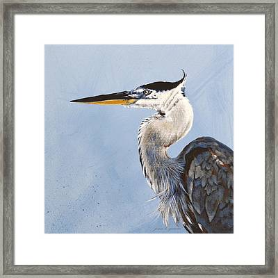 Great Blue II Framed Print