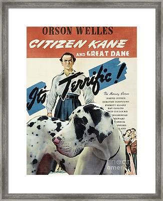 Great Dane Art Canvas Print - Citizen Kane Movie Poster Framed Print by Sandra Sij