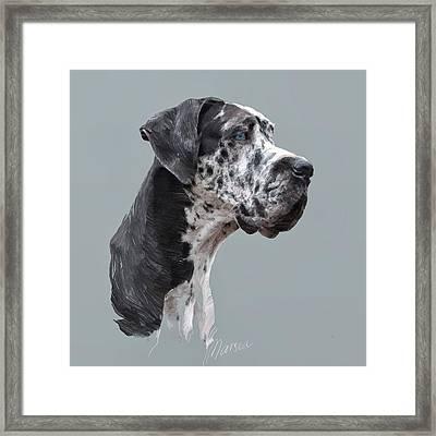 Great Dane Framed Print by Marina Likholat