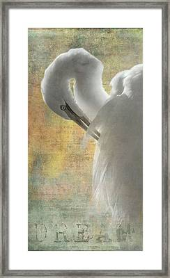 Great Egret Dream Framed Print by Angie Vogel