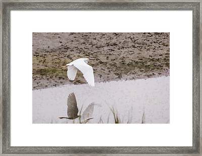 Great Egret Framed Print by Photographic Art by Russel Ray Photos