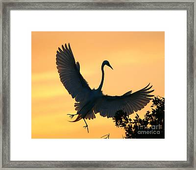 Framed Print featuring the photograph  Sunset Ballet by John F Tsumas