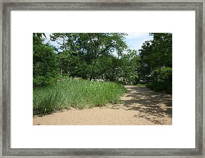 Great Falls Park - 121210 Framed Print by DC Photographer