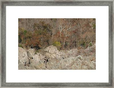Great Falls Va - 12128 Framed Print by DC Photographer