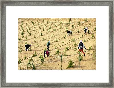 Great Green Wall Framed Print by Thierry Berrod, Mona Lisa Production
