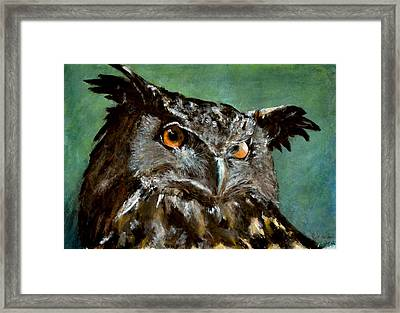 Great Horned Owl Framed Print by Carlo Ghirardelli