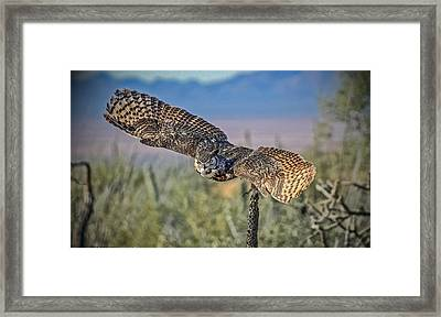 Framed Print featuring the mixed media Great Horned Owl by Elaine Malott