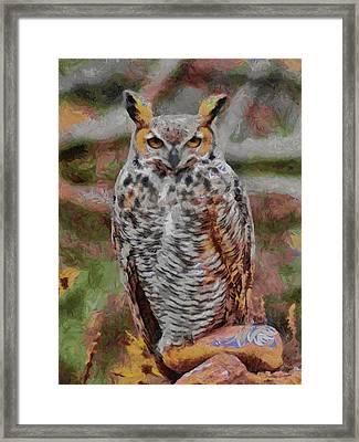 Great Horned Owl Fun 2 Framed Print by Ernie Echols