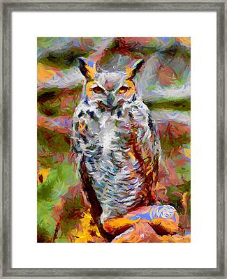 Great Horned Owl Fun Framed Print by Ernie Echols