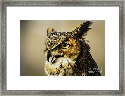 Great Horned Owl Framed Print by Julieanna D