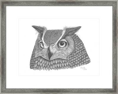 Great Horned Owl Framed Print by Patricia Hiltz