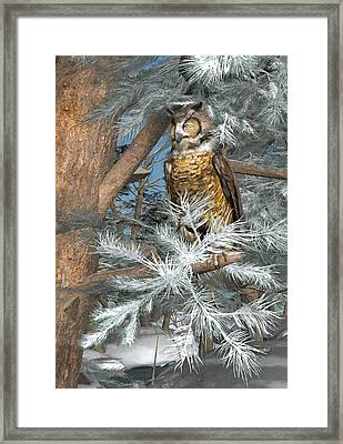 Great Horned Owl Framed Print by Peter J Sucy