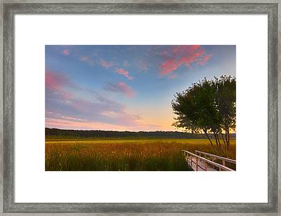 Great Meadows Late Summer Setting Framed Print by Sylvia J Zarco