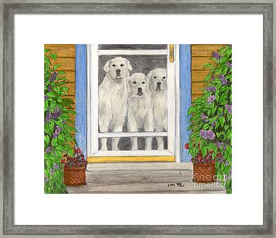 Great Pyrenees Dogs On Porch Animal Pets Art Framed Print