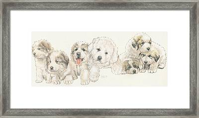 Great Pyrenees Puppies Framed Print by Barbara Keith