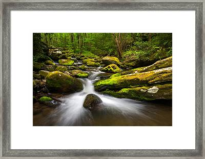 Great Smoky Mountains Gatlinburg Tn Lush Framed Print by Dave Allen