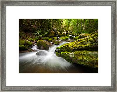 Great Smoky Mountains Gatlinburg Tn Roaring Fork - Gift Of Life Framed Print by Dave Allen