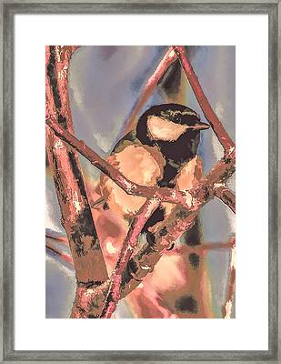 Great Tit  A  Leif Sohlman Framed Print