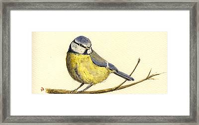Great Tit Framed Print by Juan  Bosco