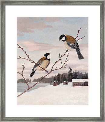 Great Tits Framed Print