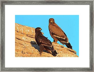Greater Spotted Eagles Framed Print by Bildagentur-online/mcphoto-schaef
