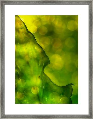 Green Abstract Framed Print
