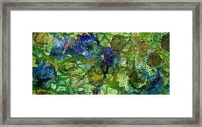 Green Algae Framed Print by Joanne Smoley
