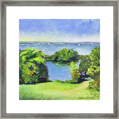 Green And Blue Caumsett Framed Print by Susan Herbst