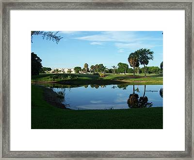 Framed Print featuring the photograph Green And Blue by Sheila Silverstein