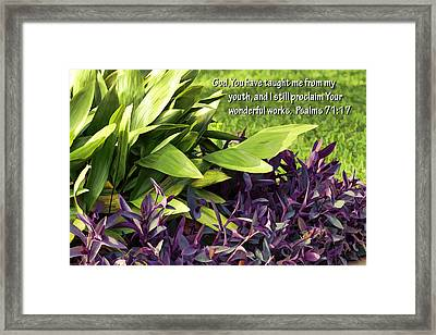 Green And Purple Foliage Ps. 71v17 Framed Print by Linda Phelps