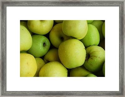 Green Apples Framed Print by Mamie Gunning