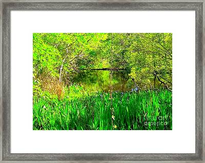 Framed Print featuring the photograph Green As Emerald's by Michael Hoard