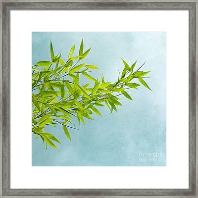 Green Bamboo Framed Print by Priska Wettstein